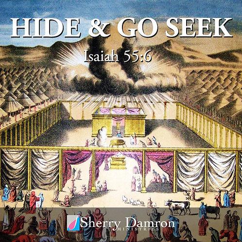 Hide & Go Seek (CD)