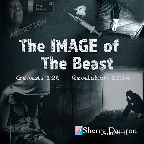The Image of The Beast (CD)