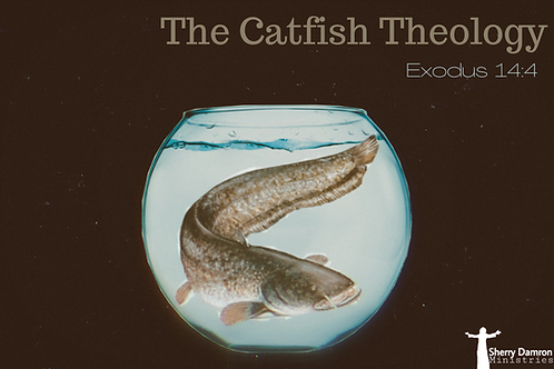 The Catfish Theology (CD)