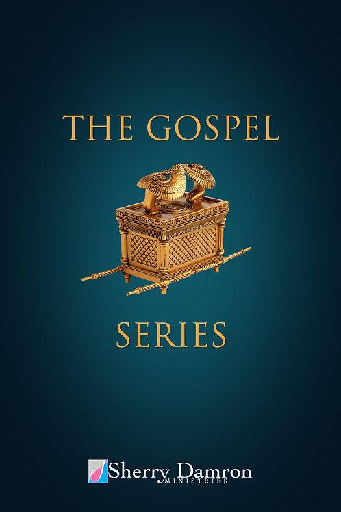 The Gospel Series (DVD - 4 Sermon Series)