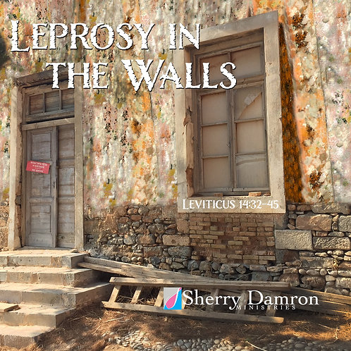 Leprosy In The Walls (CD)