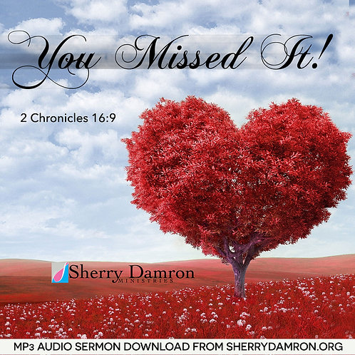 You Missed It! (MP3 SERMON DOWNLOAD)