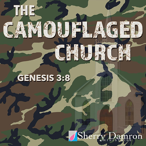"""The Camouflaged Church"" (CD)"