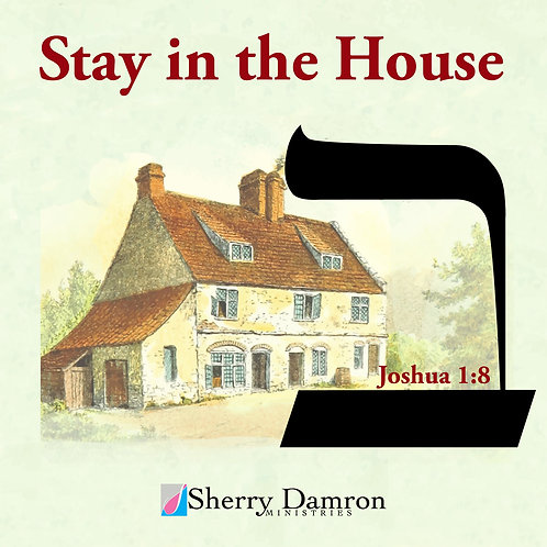 Stay In The House (CD)