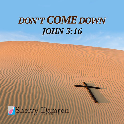 """Don't Come Down"" (CD)"