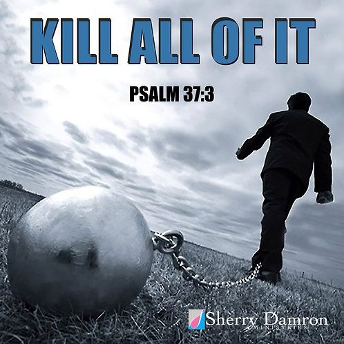 """Kill All Of It"" (CD)"