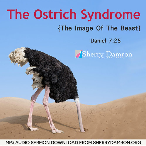 The Ostrich Syndrome (MP3 SERMON DOWNLOAD)
