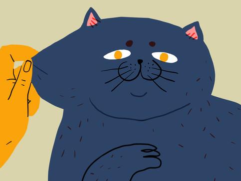 Puffing Cat