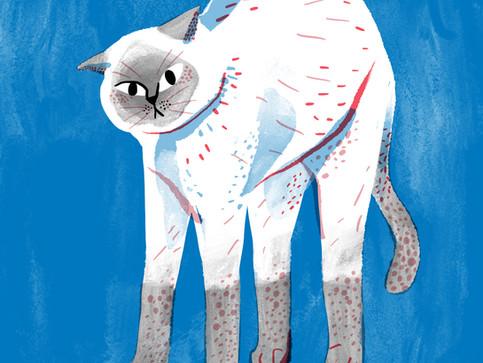 Streching Cat