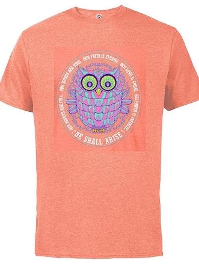 Arise Owl
