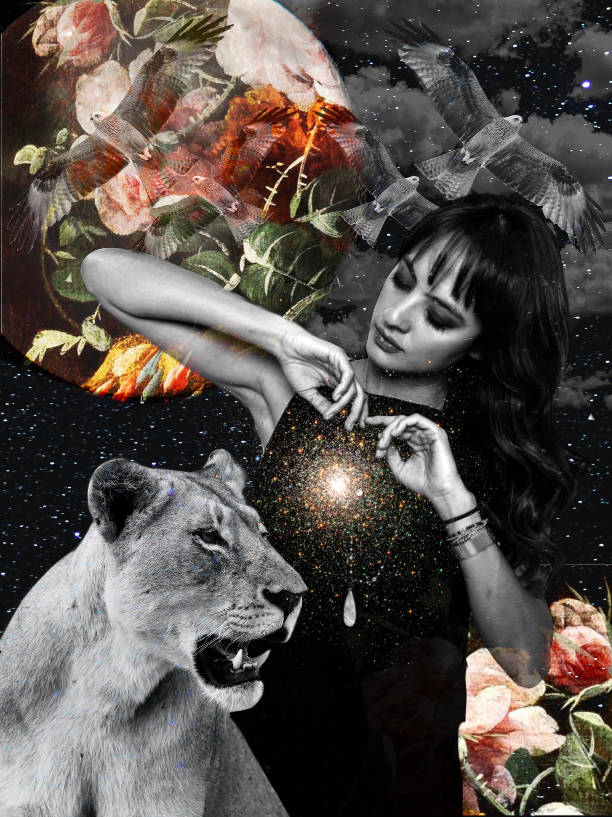 Spirit Animal Visionary Art
