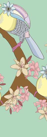 Flower Toucan