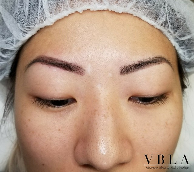1 MONTH HEALED MICROSHADE BROWS