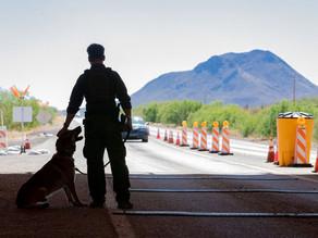 Директор ФБР подтверждает самое худшее: деятельность мексиканских картелей «перетекает» в США