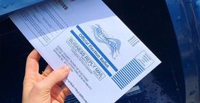 Голосование по почте: планируемый хаос и неизбежное мошенничество