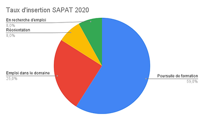 Taux d'insertion SAPAT 2020.png