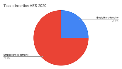 Taux d'insertion AES 2020.png