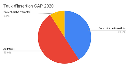 Taux d'insertion CAP 2020.png