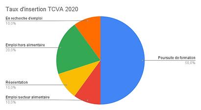 Taux d'insertion TCVA 2020.png