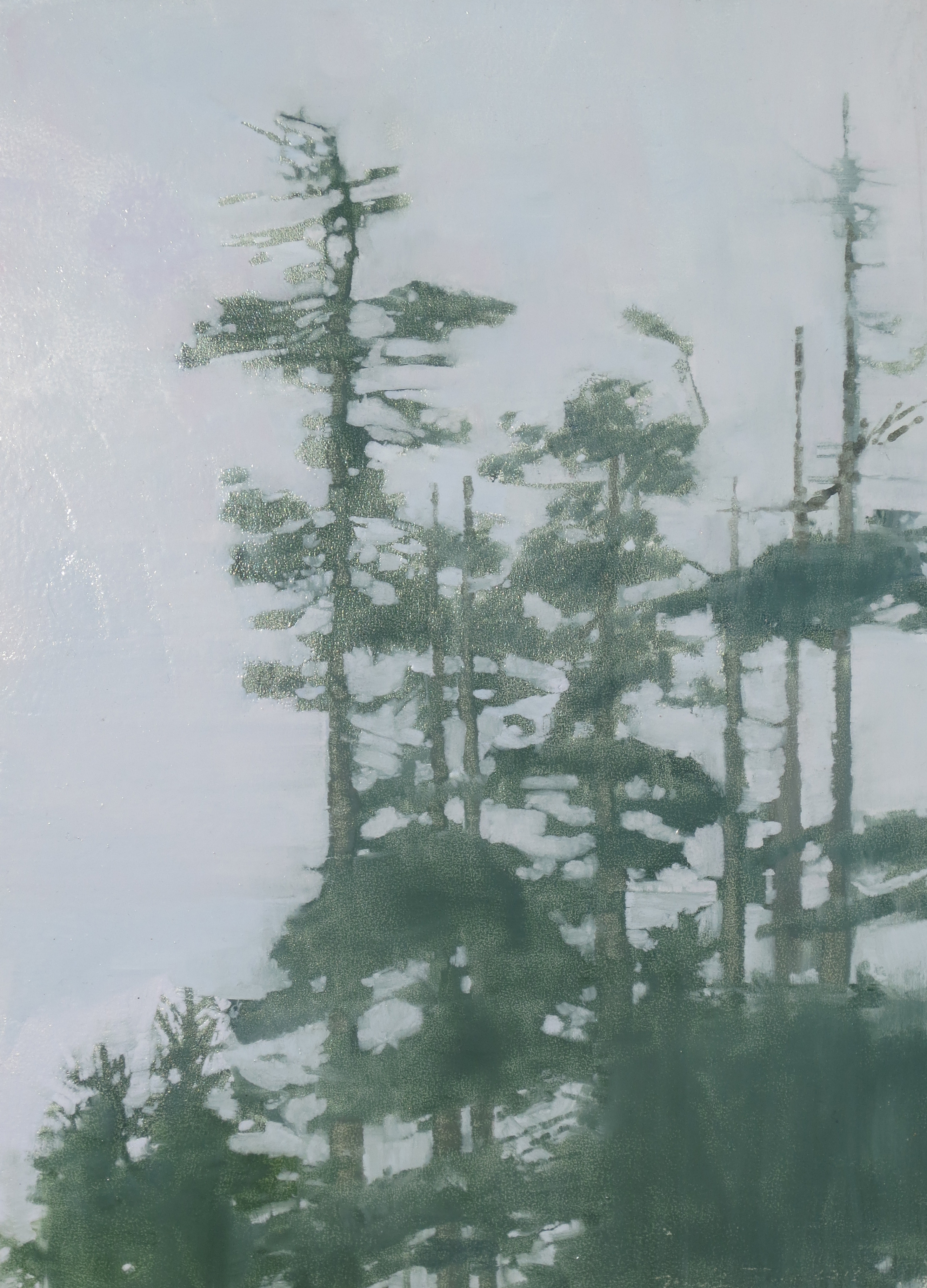 Treetops in Fog