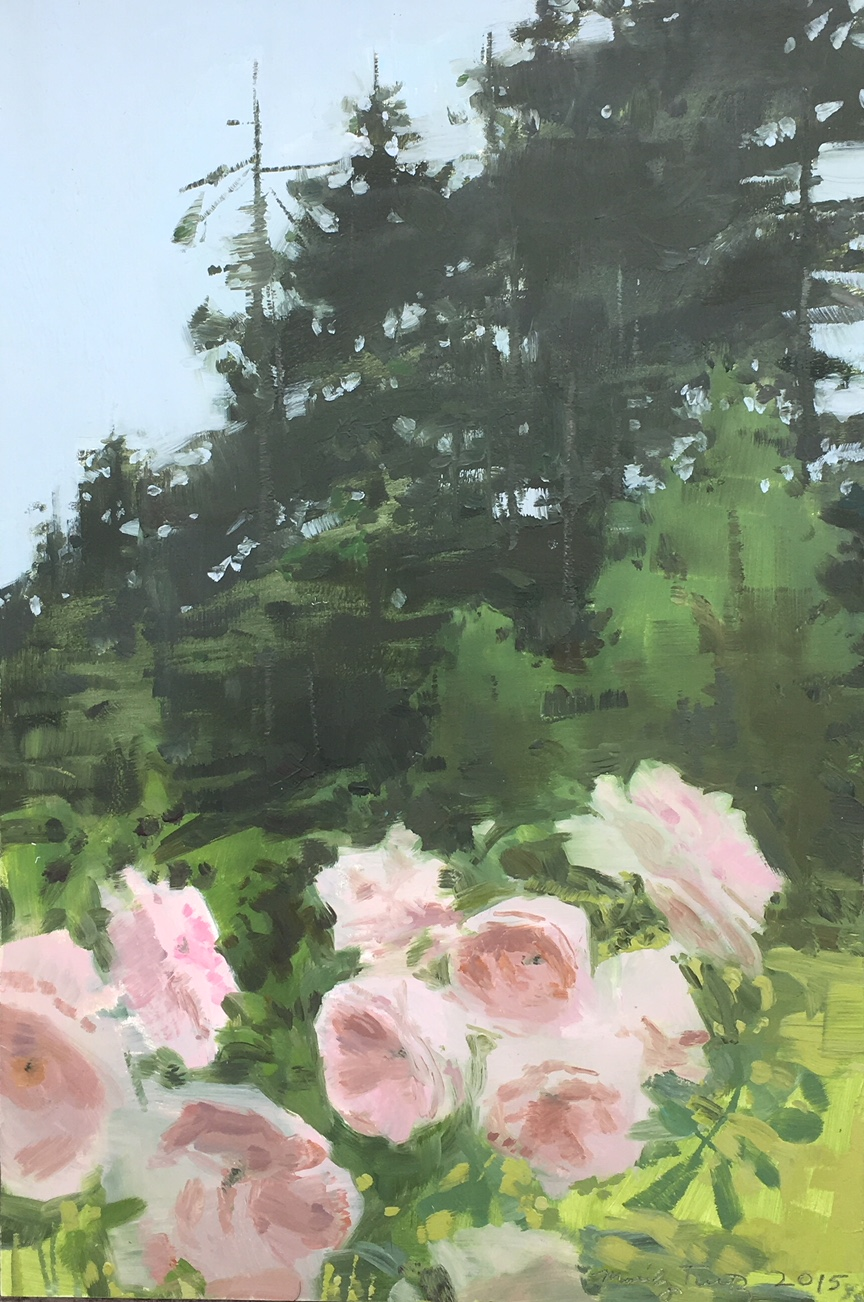 Pink Roses 2015 12 x 8