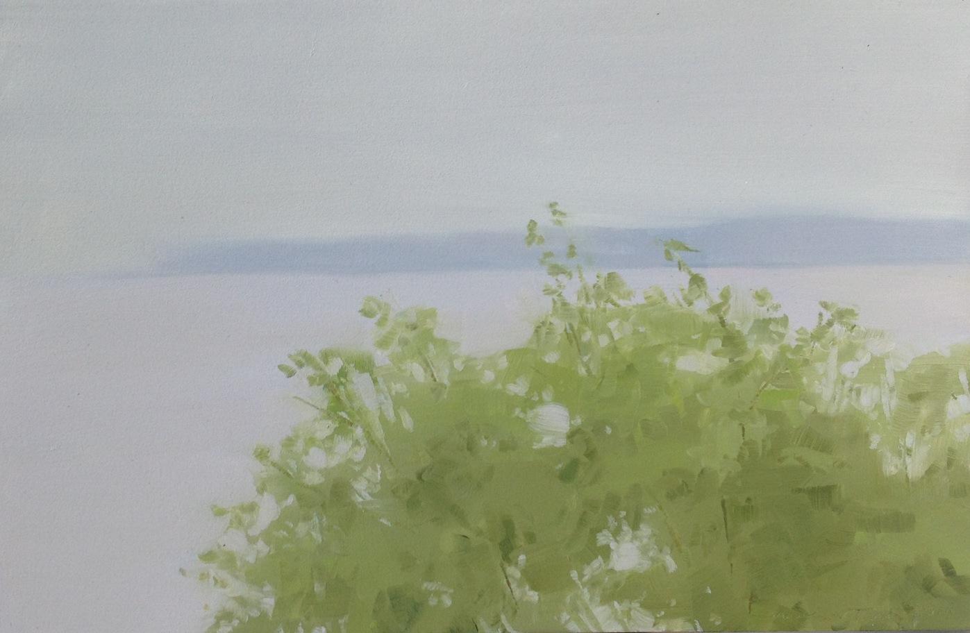 Bay in Fog