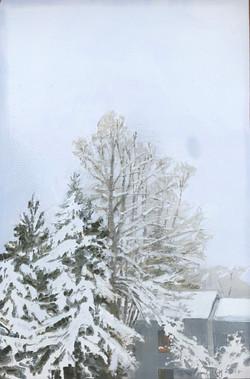 Last Snow Day