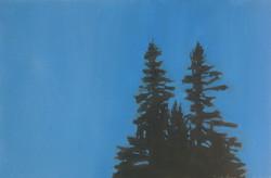 Night Trees, McGlynn's Field