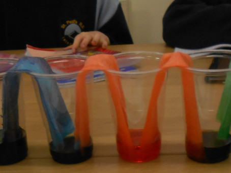 Science Week in 3rd + 4th Class