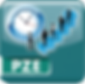 Icon_PZE_psd.png