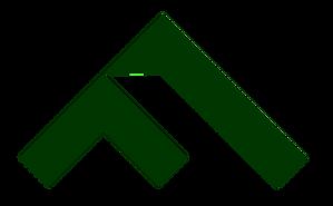 Logo_Finsurancy_mint_F.png