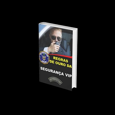 REGRAS DE OURO DA SEGURANÇA VIP 4.png
