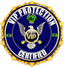 LOGO%20VIP%20ULTIMA_edited.png
