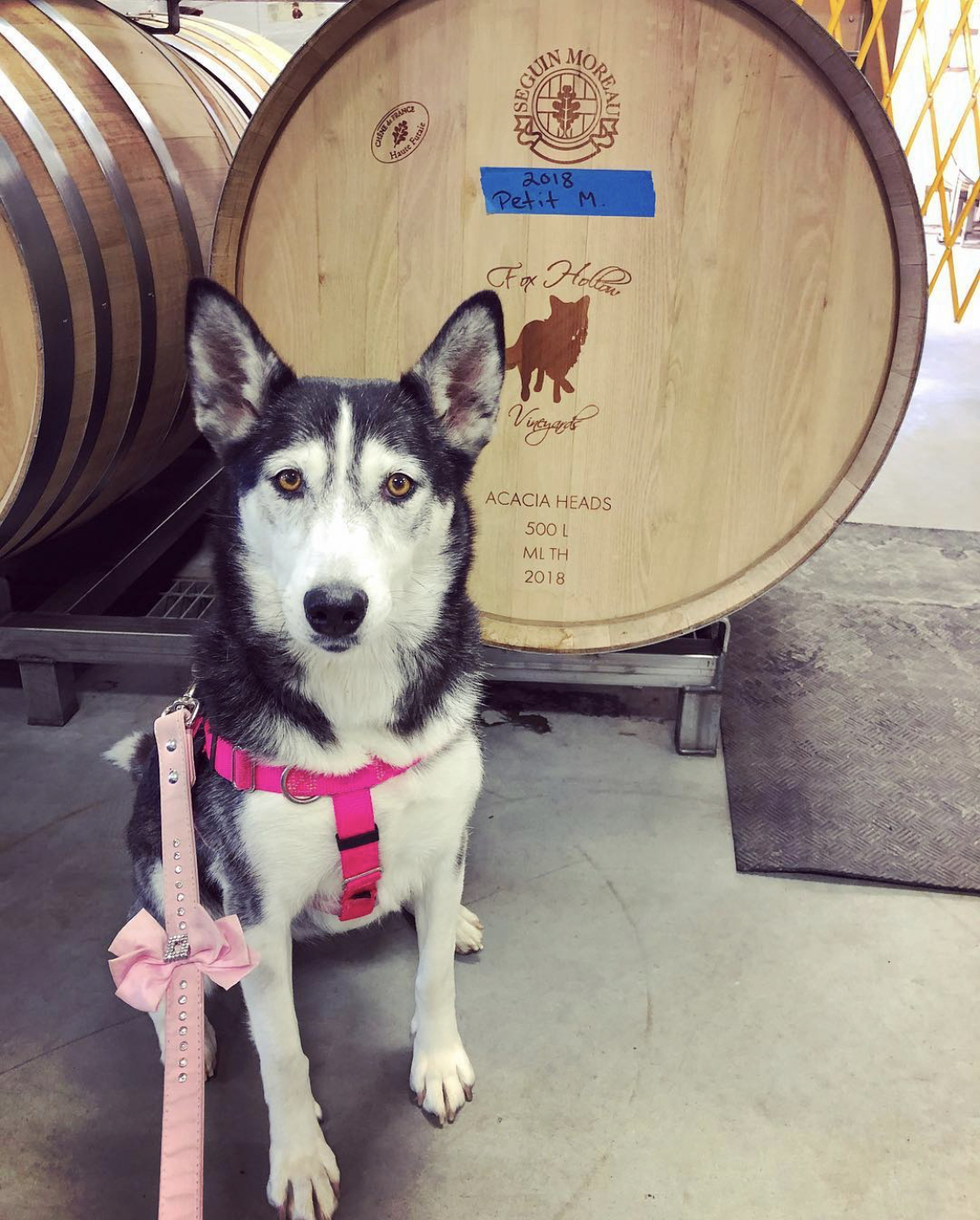 Luna by Wine Barrel