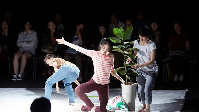 유용무용론 | Yuyongmuyongron [Theory of Useful Dance]