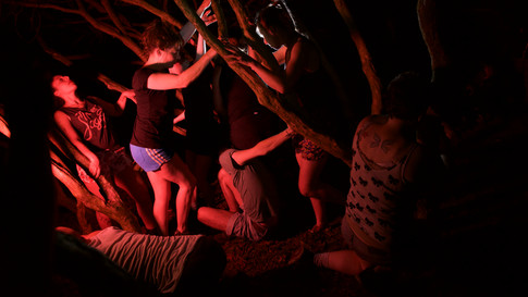 2015  Duration : 20 minutes  Broneirion House  Video by Carole Vasquez  Movement Lead by Eunjin Choi  Dance by various artists in NTW summercamp   Photo by Jorge Lizarde