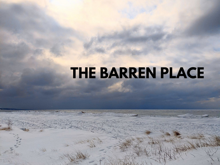 The Barren Place