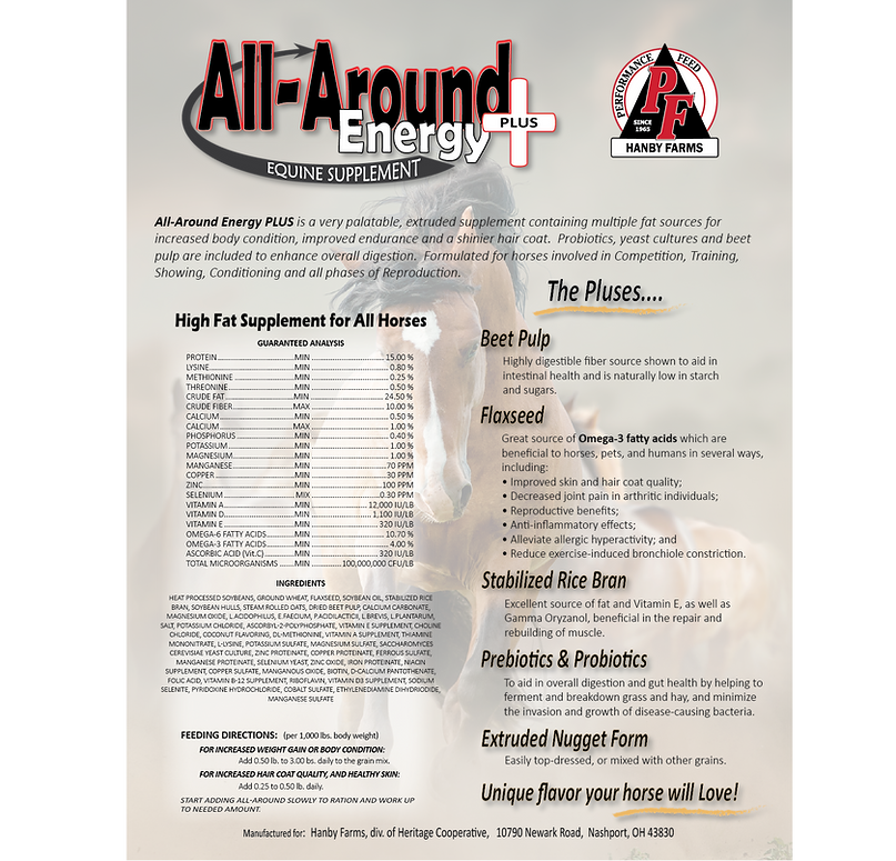 AllAround Sell Sheet-COLOR.png