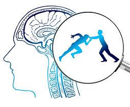 brain-4065092_1920.jpg