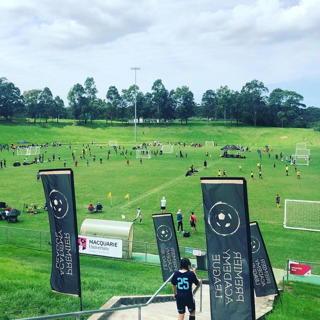 Macquarie University Fields
