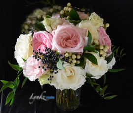 Garden roses, regular and spray roses, v