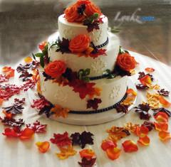 Fall theme cake decor