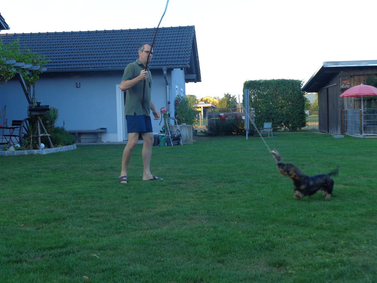 Reizangel Training