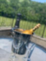 swallows champagne blurred.jpg