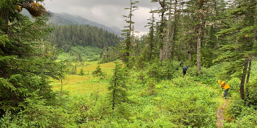 Shrode Lake Trail and Cabin Maintenance Waitlist