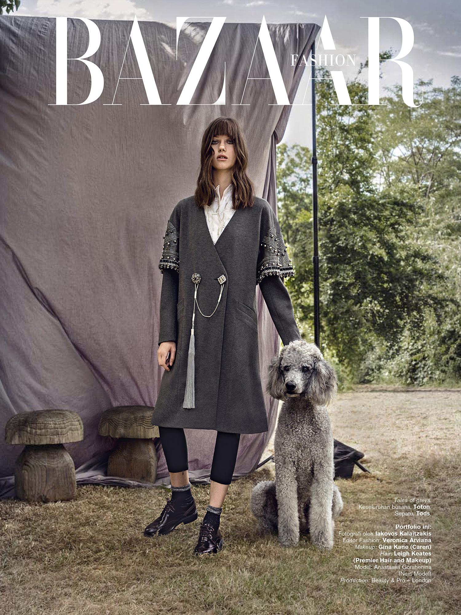 Harper's Bazaar Id 1