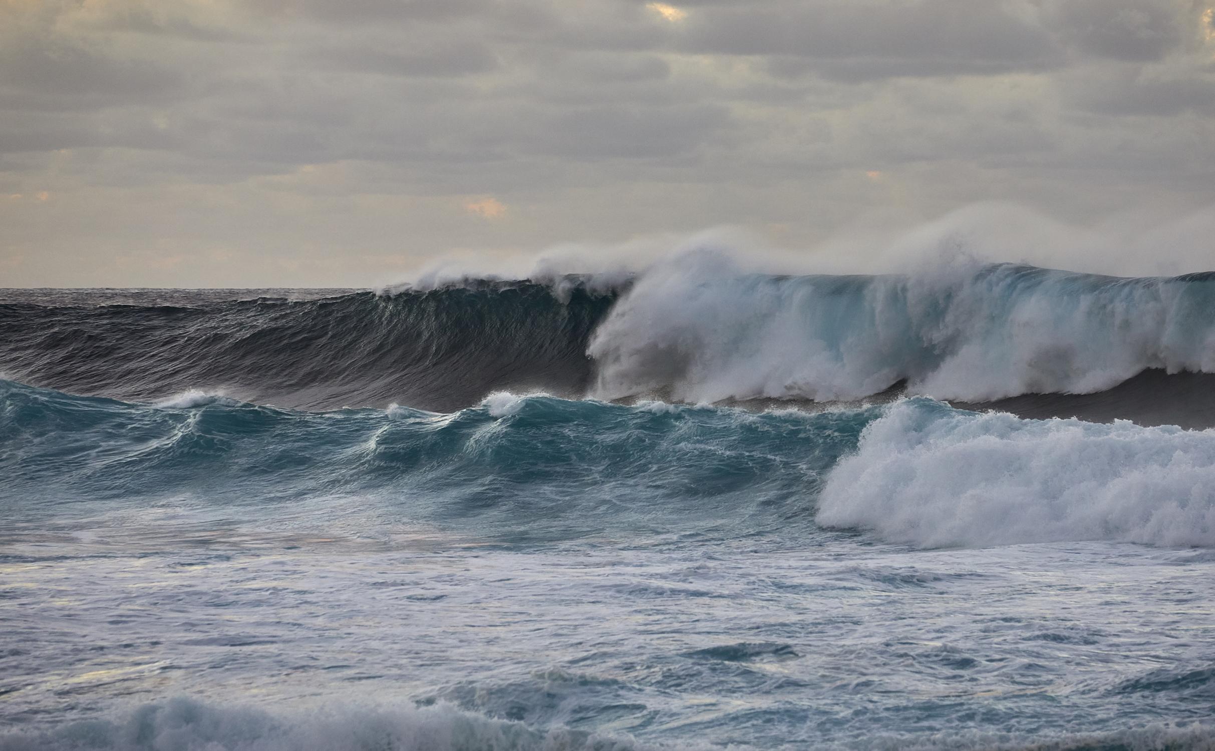 Nagai Puntiverio Surfer6