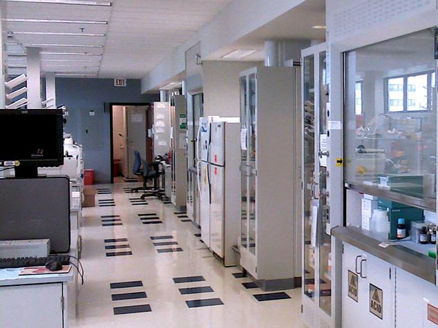 TechTown Perinatology Research Branch