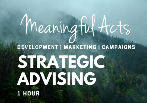 Meaningful Acts | Strategic Advising