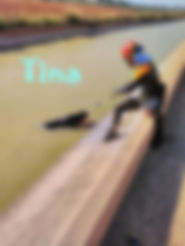 TIN4.jpg